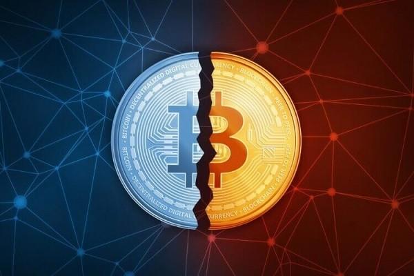 CriptoNews btc-halving Halving Bitcoin avvenuto: cosa aspettarsi ora?